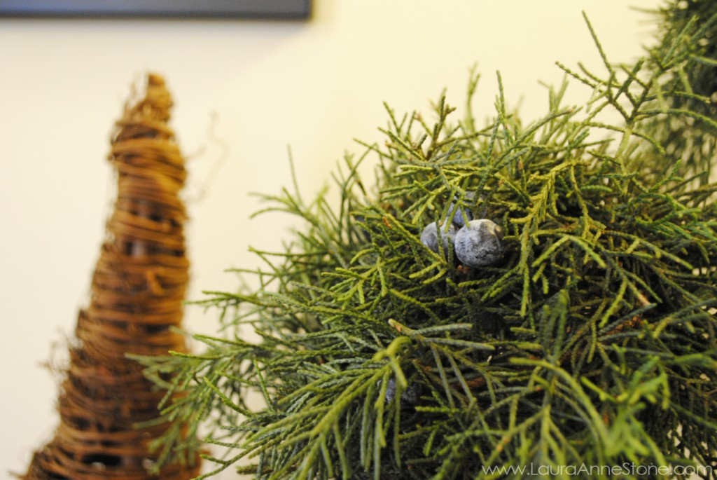 2013 Holiday Dining Room - juniper topiary spheres - LauraAnneStone.com